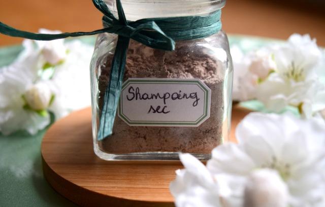 shampoing-sec-8