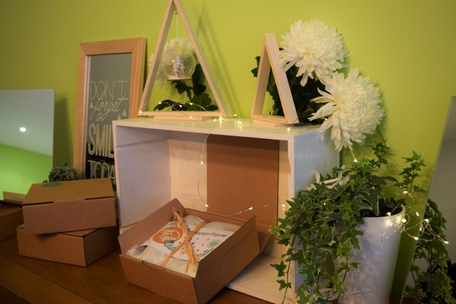 greenmeow-box (3)